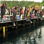 Divers take Grizzlies for a swim