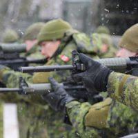 Operation Unifier, Ukraine