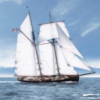 An architect's rendering of the proposed schooner Eleanor created by Will Krzymowski. The Sail and Life Training Society (SALTS) have announced plans for construction of a third tall ship for its fleet of vessels that teach youth from across Canada sailing skills.