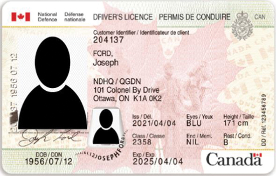 Example of the new DND 404 Driver's Licence.