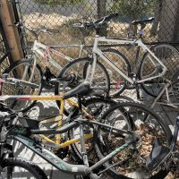 Derelict bike cleanup begins